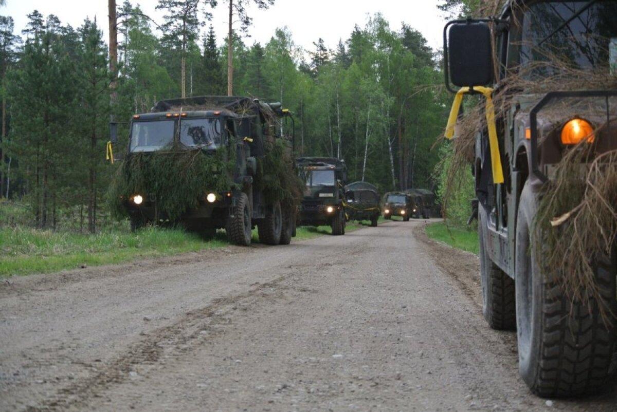 Колонна техники во время остановки в лесу