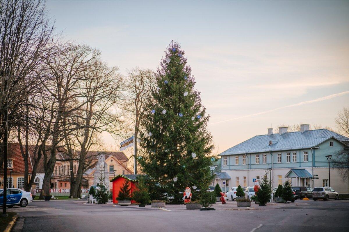 Haapsalu jõulupuu