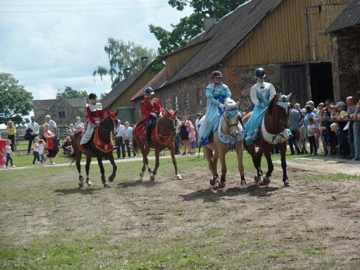 """Tori hobused näitavad vallaüritusel """"Tori ööd ja päevad"""", kui kenasti nad oskavad kadrilli tantsida."""