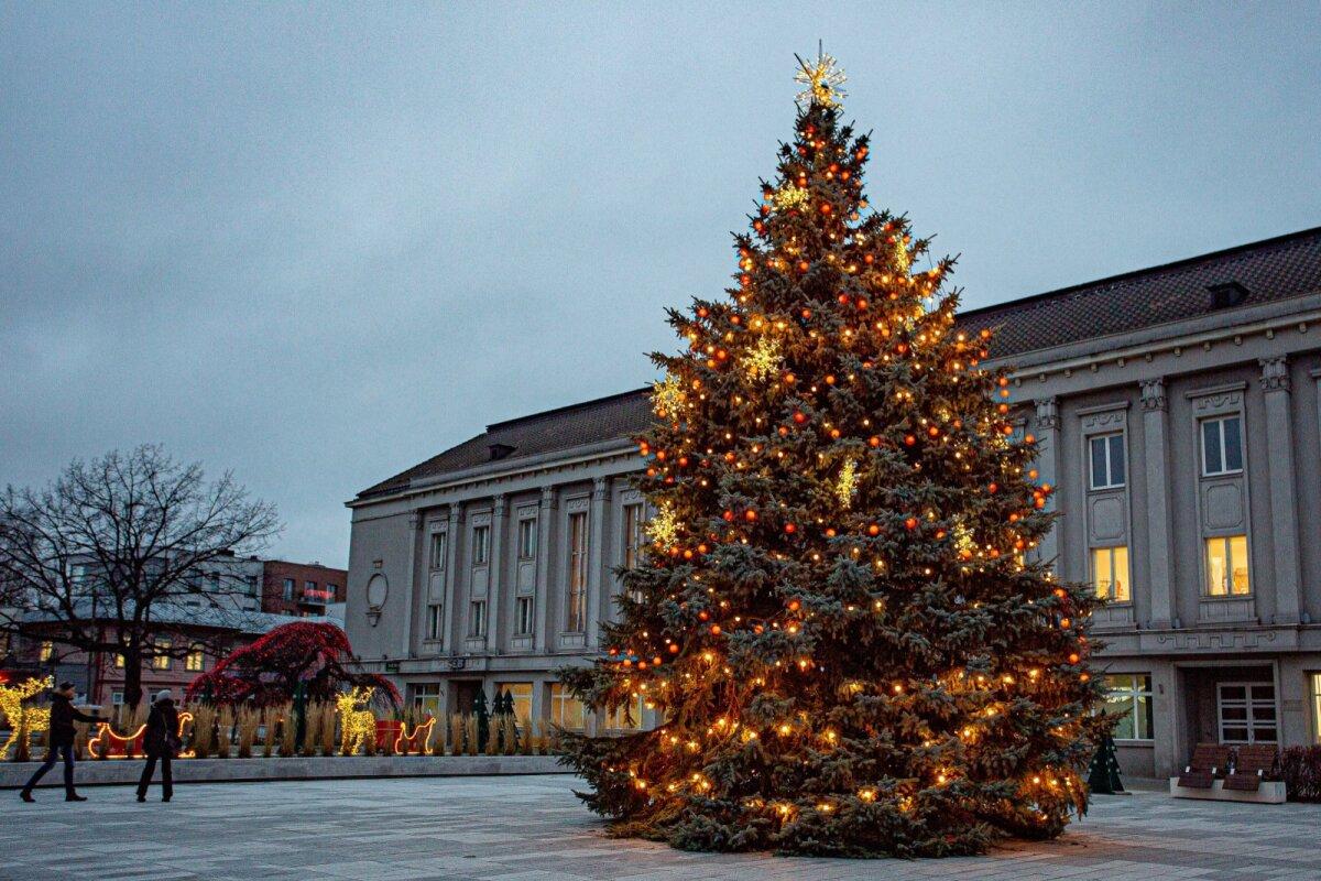 Pärnu jõulupuud 2020