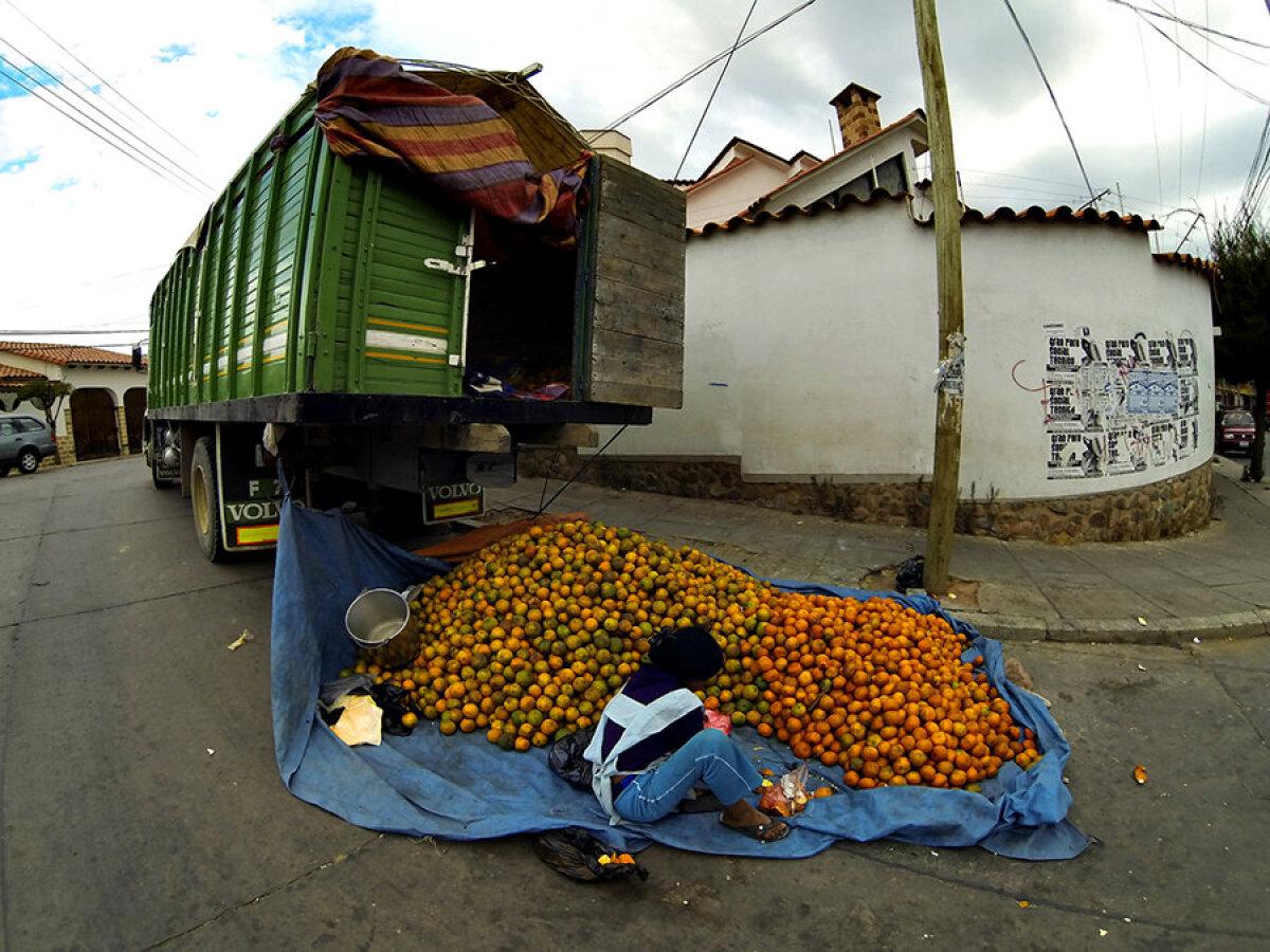 Apelsinide laadimine ja sorteerimine.