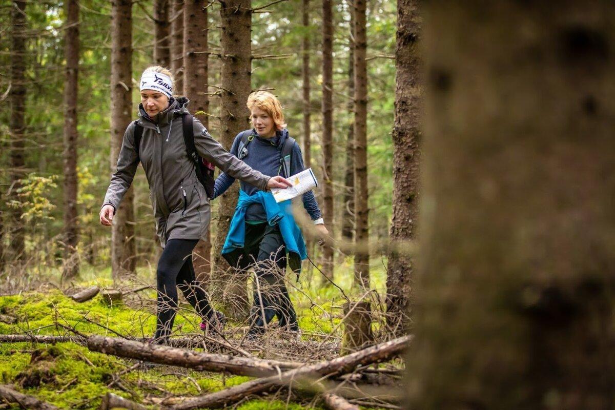 Orienteerumine ei pea olema ainult võidujooks ajale, vabalt võib ka rajal jalutada ja lihtsalt loodust nautida