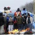 Prantsusmaa: Brexiti korral lastakse Calais's laagris olevad migrandid kohe Inglismaale