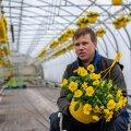 Kanepi aiandi tegevjuht Margus Vahtramäe on murelik, sest uus aiandushooaeg võib jaemüügile põntsu panna
