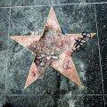Trumpi täht Hollywoodi tähtede alleel peksti kirkaga sodiks