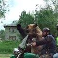 VIDEO | Võimalik vaid Venemaal: karu ja mehed sõidavad motorrattaga keset linna