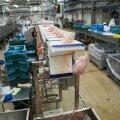 HKScan, Tallegg lihatööstus