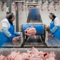 Tallegg Tabasalu lihatööstus