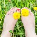 Kevadised lilled