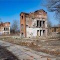 ФОТО: На Коплиских линиях падают деревья и промышляют вандалы