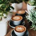 Какую кофемашину выбрать себе на кухню? Советы для кофеманов
