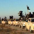 Toyotadest on saanud terroristide lemmikkastikad.