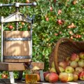 Koduseks mahlateoks kasutatakse kõige sagedamini korvpresse.