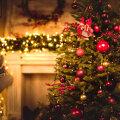 JÕULUMAAGIA: kombed ja traditsioonid, mida tuleb jõululaupäeval täita, et kindlustada endale õnn, tervis ja rikkus!