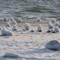 FOTOD   Vesi voolib jääskulptuure