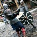 Viikingivõitlus