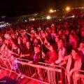 Фестиваль Go Narva в этом году не состоится