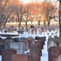 Põnev ja samas ka hirmutav: faktid surmast, mida sa veel ei teadnud