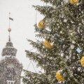 Синоптик: надежда на белое Рождество в Эстонии сохраняется. Правда, не везде