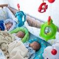 ВИДЕО | Мать таллиннских тройняшек: нам срочно нужна поддержка