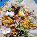 Mida teha koduste biojäätmetega, kui aias kompostihunnikut ei ole?