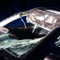 Škoda Superb pärast kokkupõrget põdraga.