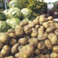 Kaupluste köögivilja hinnad on soodsad
