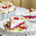 Otse põõsast koogile! Beseekattega punasesõstrakook
