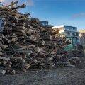 ФОТО | У пляжа Каларанд вырубили деревья. Там начнут строить фешенебельный район