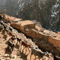 Just siinsest mägisest piirkonnast leiti kahe naise surnukehad. Jbel Toubkal on turistide seas populaarne ja kohalikud teevad turistidele seal tihti pikemaid matku.