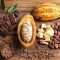 Kakaooast šokolaadini.