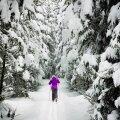 Где в Таллинне покататься с горки или на лыжах?