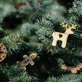 Esivanemate traditsioonid | Jõulukuu pühad ja ajad