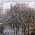 Эстонский климат или все-таки пришла зима?