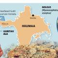 Teadlased uurivad Kõpu ümbruse merd