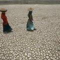 Uurimus: India-Pakistani väikegi tuumakonflikt tooks kaasa ülemaailmse nälja