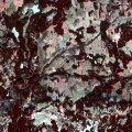 Foto: Euroopa Komisjoni ja ESA radarsatelliidi Sentinel 2 pilt Tõraverest 2016. aasta alguses.
