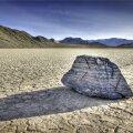 Kõrb ja kivi ehk Tekkis tahtmine mitte midagi arvata