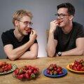 Kord maitsti toimetuses erinevaid maasikaid
