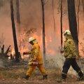 VIDEO   Austraalias võtsid tuhanded inimesed uusaasta vastu tulelõksus. Juurdepääsu nendeni pole