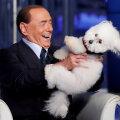 Silvio Berlusconi mängib telesaates koeraga