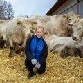 Kunagise Kasari kolhoosi esimehe tütar Mariliis Vahar jättis linnanaise ja vallaametniku elu seljataha ning hakkas kümne aasta eest suuri valgeid lihaveiseid kasvatama.
