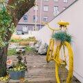 ФОТО и ВИДЕО | В Таллинне активно создают и развивают учебные сады и огороды