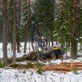 Valikraie, kui osa suuri puid jäetakse kasvama, on üks võte püsimetsanduse arendamisel.