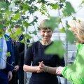 President Kersti Kaljulaid Nurmiko avamisel