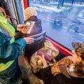 Tallinnas polegi tasuta ühistransporti? Linn räägib nüüd hoopis tallinlase sõidusoodustusest