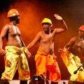Juubeli puhul täiskoosseisus: Kaheksa Zimbabwe meest laulavad tööst, naistest, kodukandi tavadest ja kümnest käsust. (foto: Viljandi Pärimusmuusika Festival)