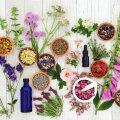Aroomiteraapia sinu köögis: milline lõhn suurendab, milline vähendab söögiisu?
