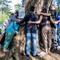 Õige puukallistaja hakkab harjutama juba varases nooruses