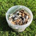 Maailmakoristus: 30 000 eestimaalast korjasid 1,6 miljon suitsukoni